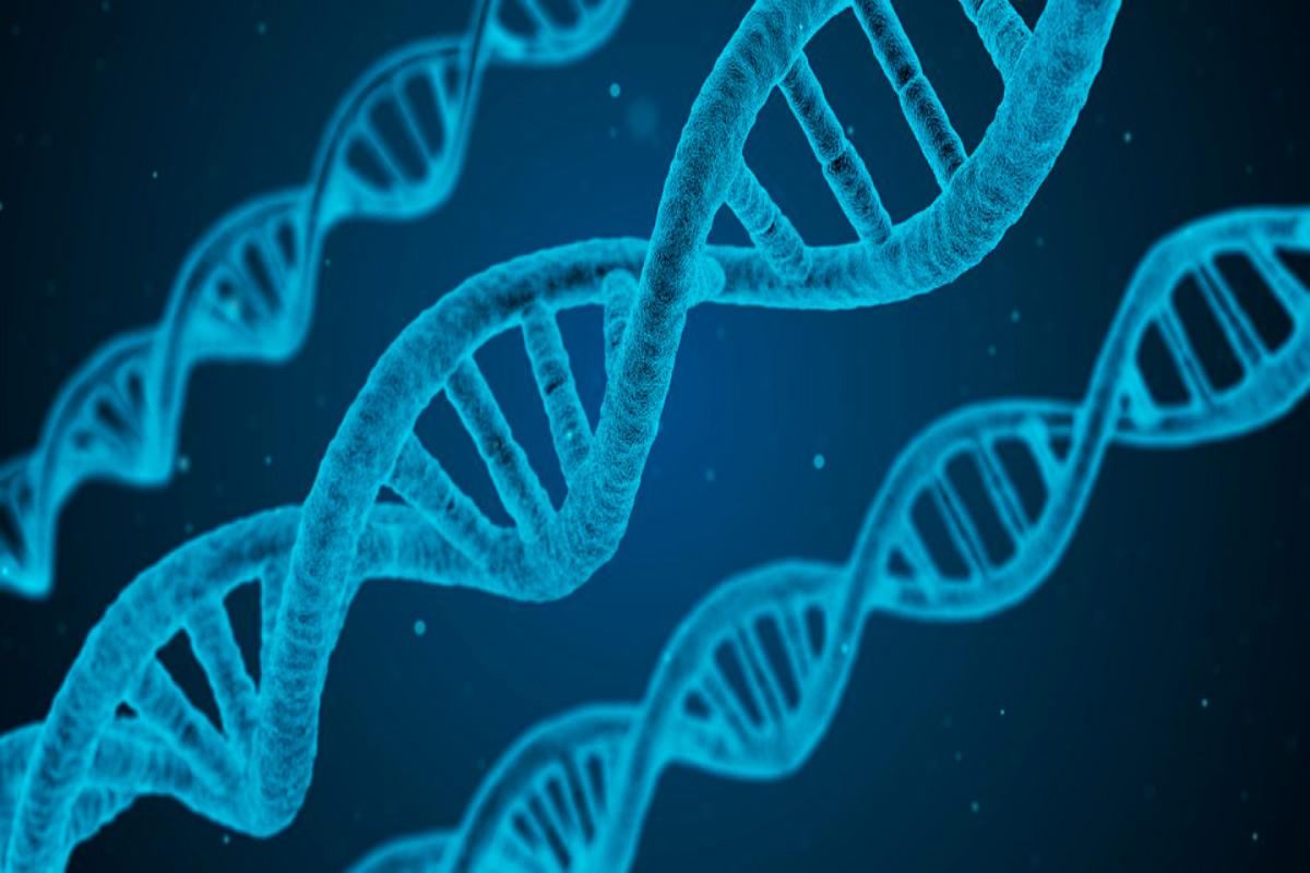 ADN, Biología y geología