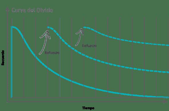La curva del olvido: Cómo repasar unas oposiciones